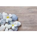 Autumn Zen Acupuncture and Herbal Medicine