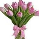 Jk Flowers & Gift Baskets