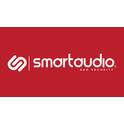 Smart Audio and Security